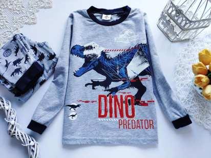 6 лет, рост 116 Пижама в динозаврах для мальчика